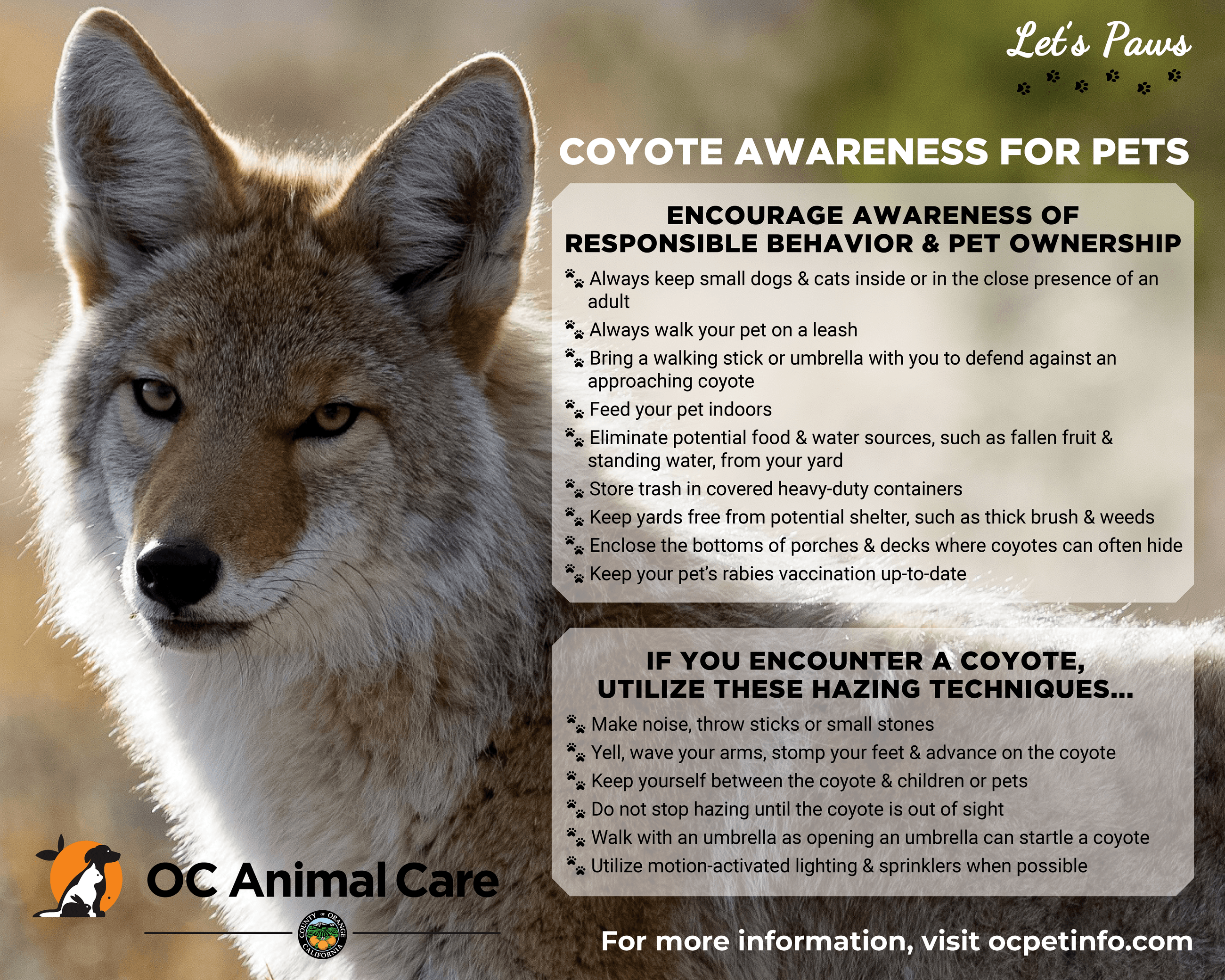 OC Animal Care Coyotes Awareness